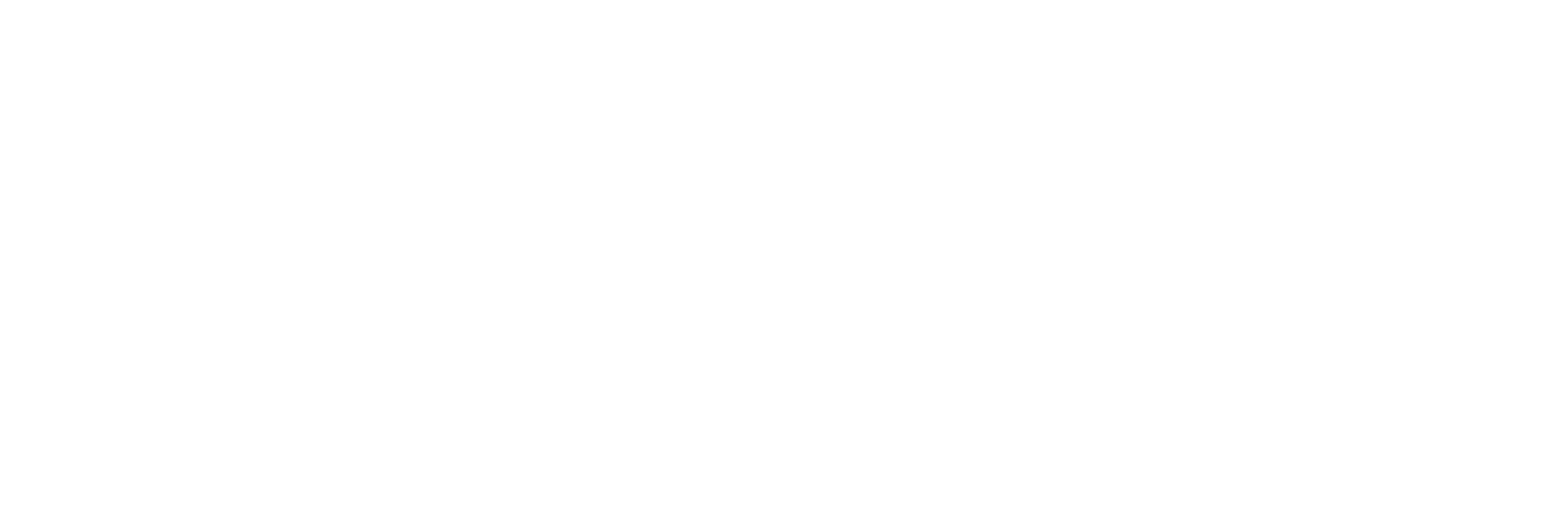 NVW_Deschutes Logo_White